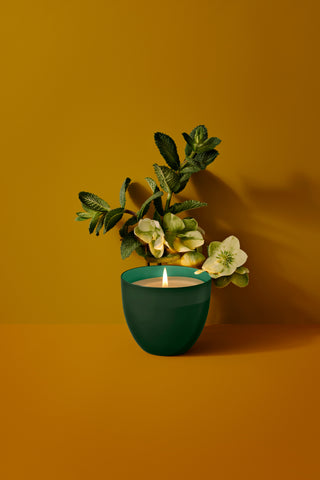 Mint Basil Candle