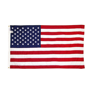 3' x 5' Nylon US Flag Flown Over the Navy Memorial