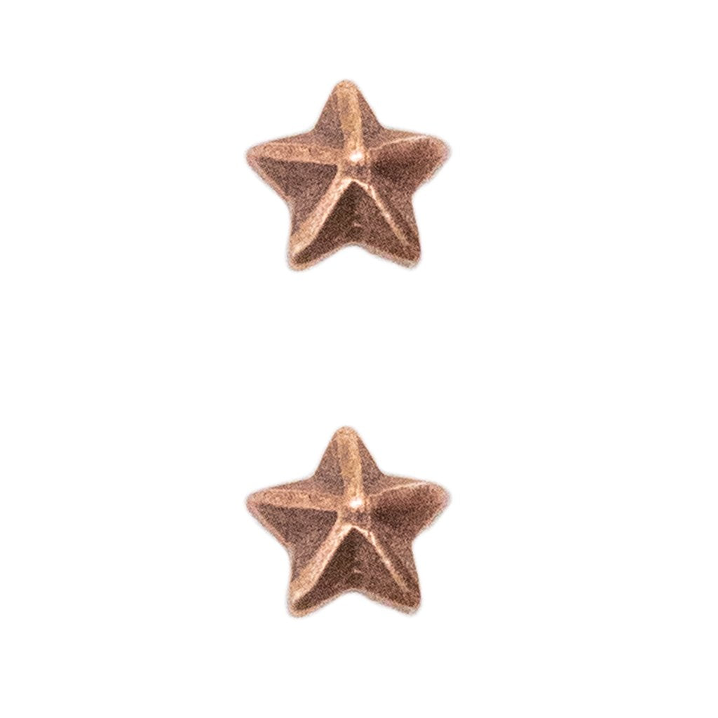 Miniature Medal Attachment: 1/8 Inch Bronze Star