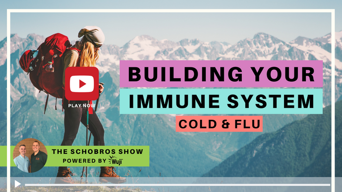 The SchoBros Show EP 11 - Building Your Immune System