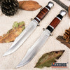 "Image of 12"" SURVIVOR FIXED BLADE KNIFE W/ SHEATH"