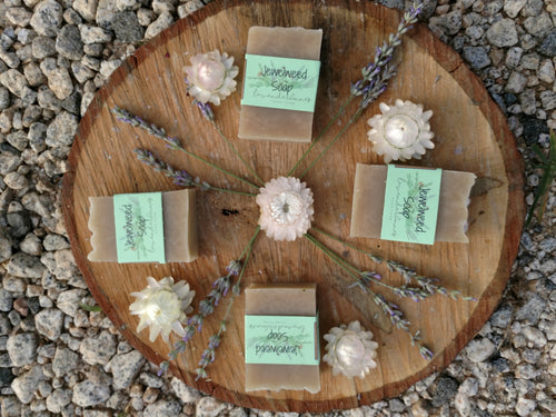 Jewelweed Poison Ivy Soap