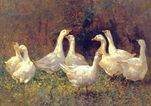 A Gaggle of Geese. 'The Floral Dance'