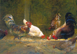 'Pecking Order.' Chickens in a barn.