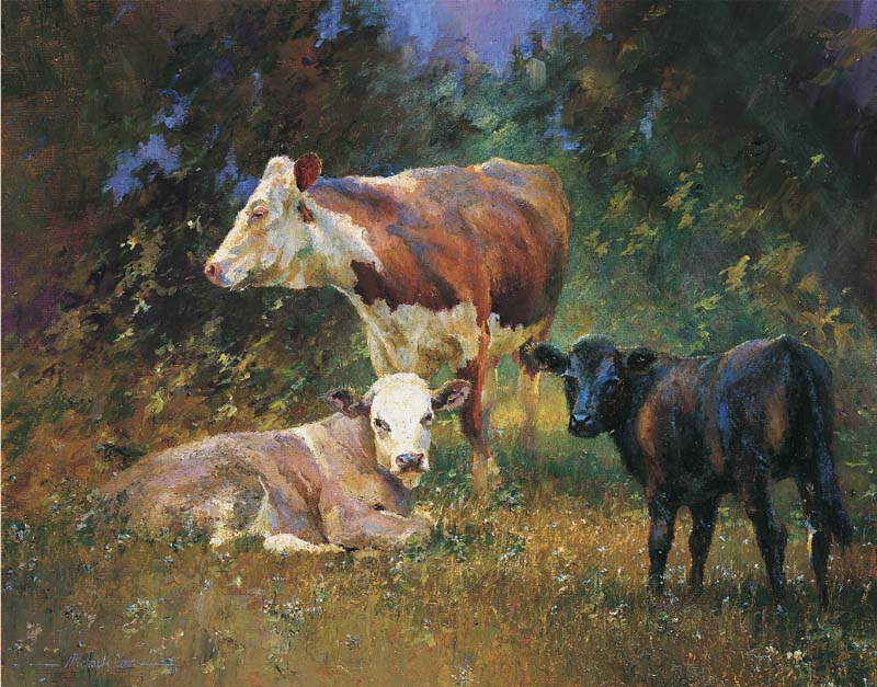 Cows and her calves. 'Dappled contentment.'