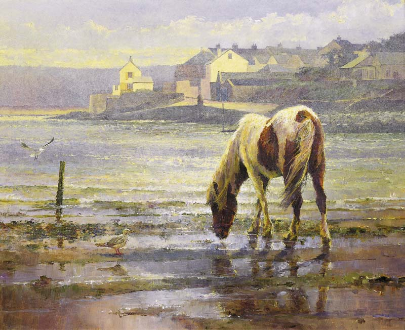 'On reflection.' A pony at Skern.