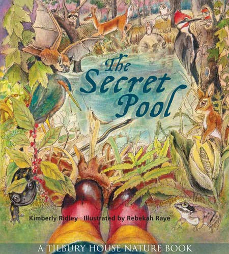 The Secret Pool Hardcover