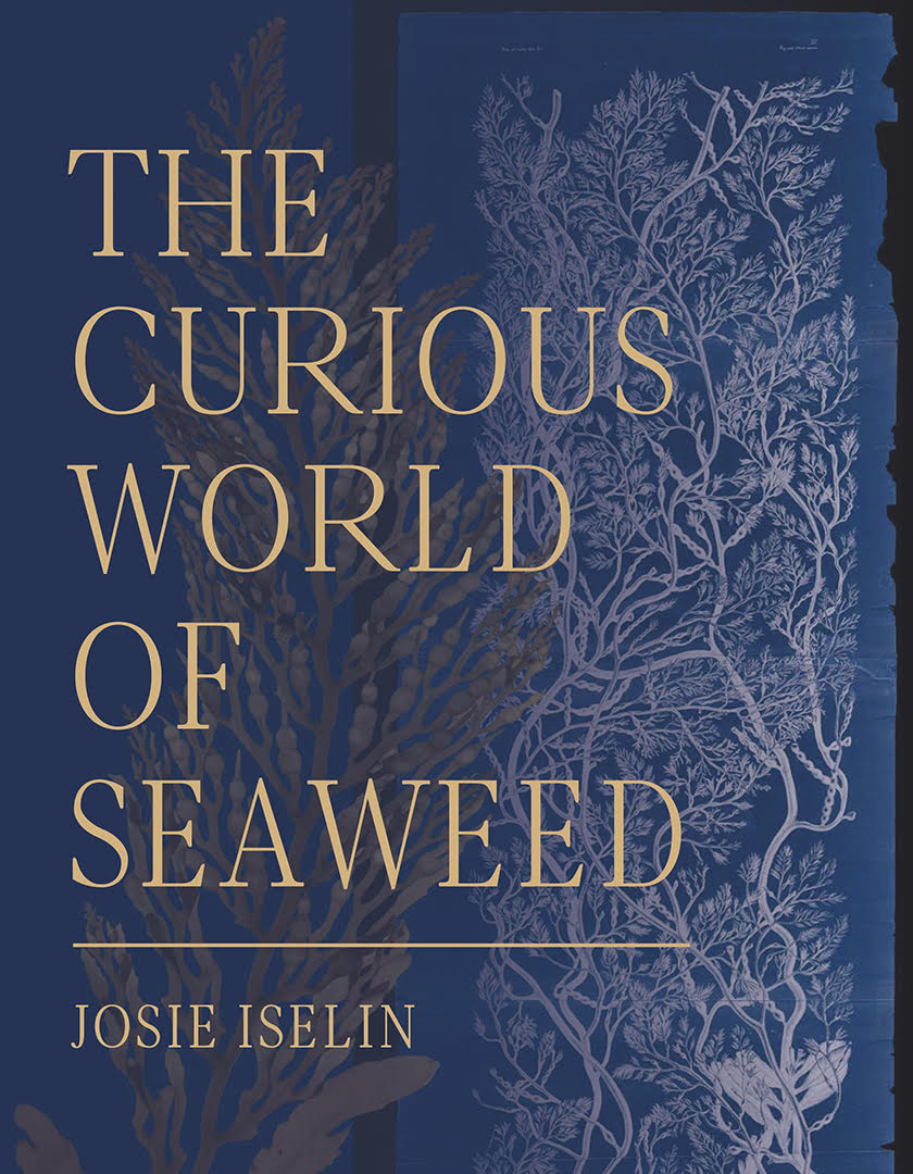 Curious World of Seaweed