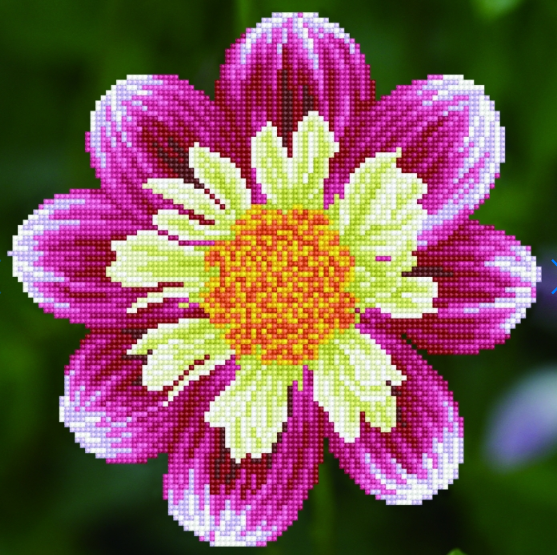 Diamond Painting Kit - 12x12 Daisy A Day