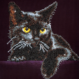 Diamond Paint Kit - 11x14 Midnight Cat
