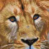 Diamond Painting Kit - 12x12 Serengeti Magix