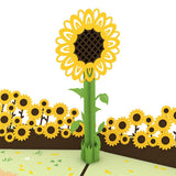 Sunflower Lovepop Pop-up Greeting Card - stamps included