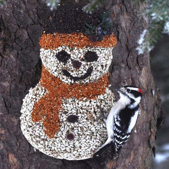 Mr. Bird Birdseed Frosty Snowman