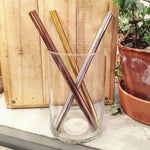 Stainless Steel Smoothie Straw