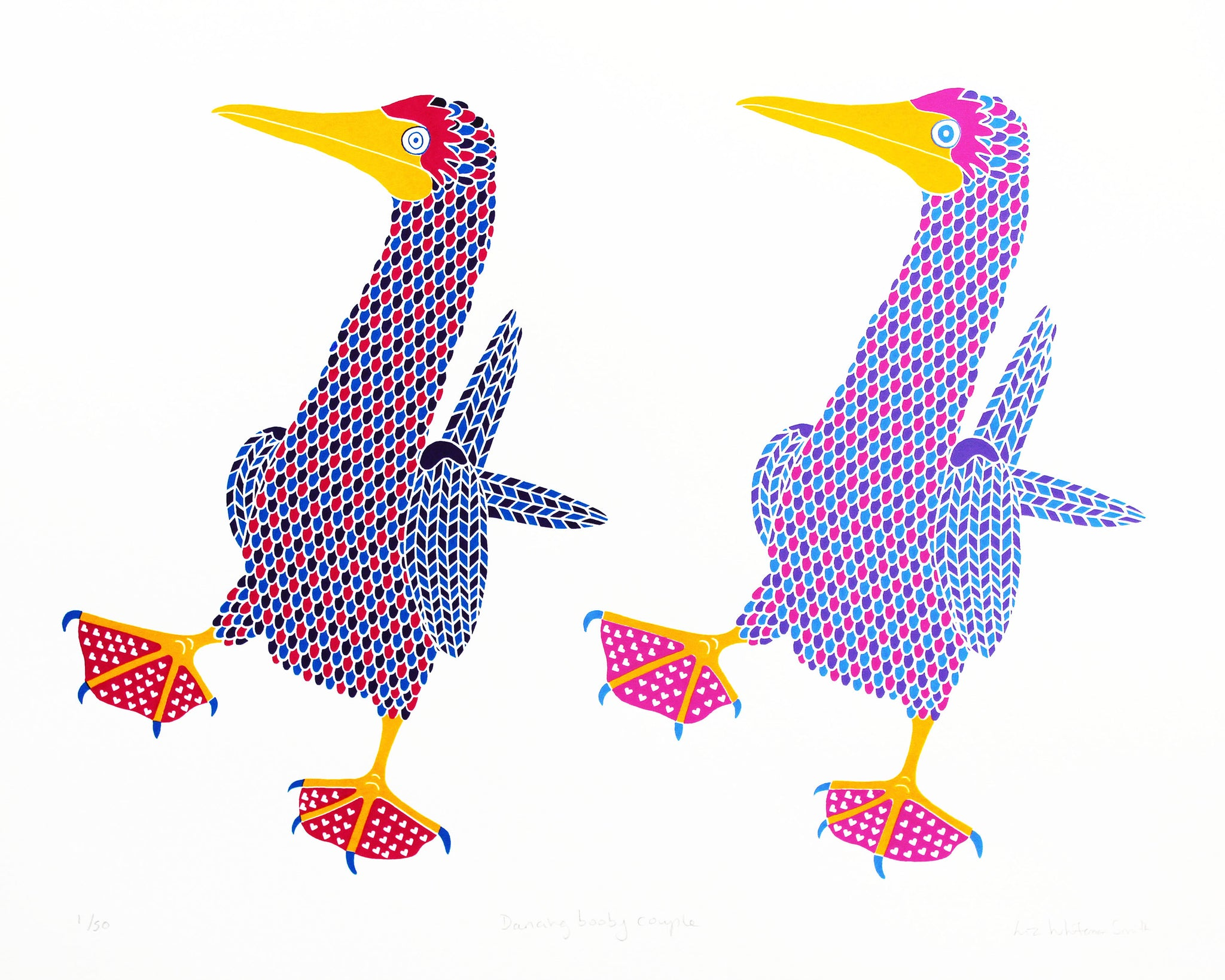 two dancing blue footed boobies screen print