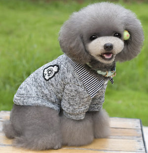 Gentleman Dog Sweater