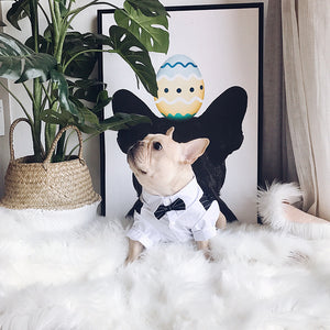 Marriage Dog Costume