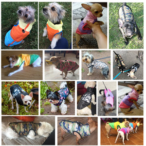 Collorfull Dog Costume (windproof)