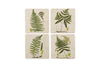 Green Fern Coaster Set