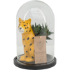 Ceramic Feline in Belljar with Succulent