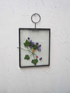 Hanging Glass Frame