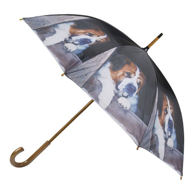 St Bernard Umbrella