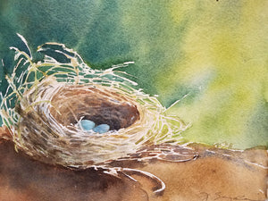 """Nest"", Transparent Watercolor, 8"" x 10"""