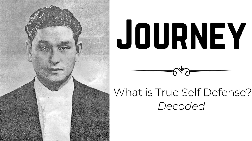 Journey Series - What is True Self Defense: Decoded 20 DVD's
