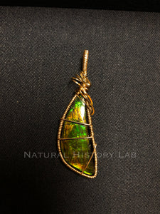 Hand-wrapped Ammolite Fossil Pendant