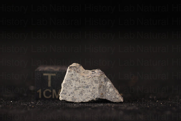 NWA 11905 LL3.10-LL3-LL5 - 2.0g Part Slice