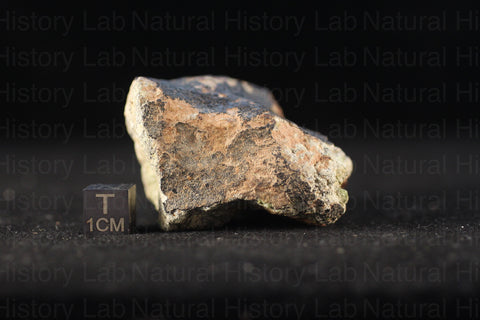 NWA 7464 Diogenite Meteorite - 124g