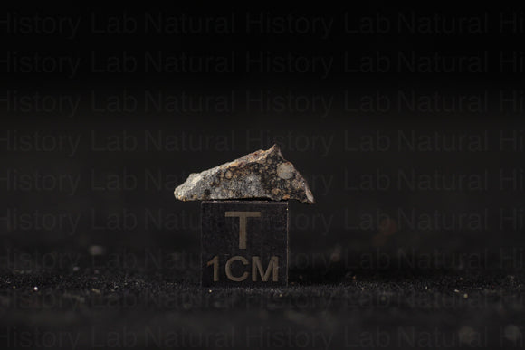 NWA 11905 LL3.10-LL3-LL5 - .5g Part Slice