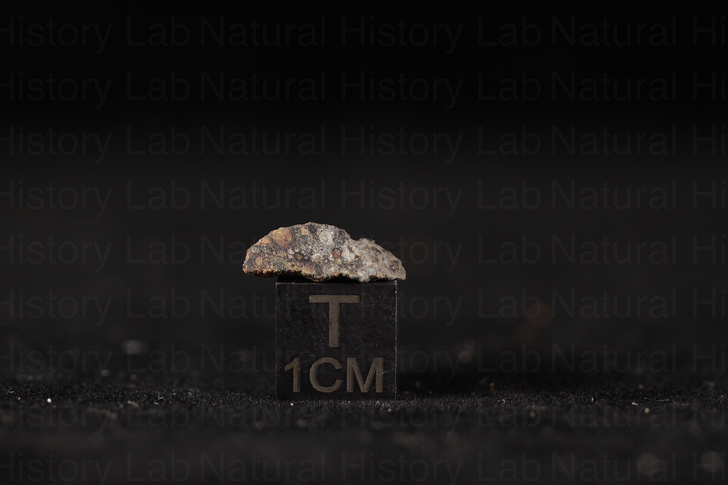 NWA 11905 LL3.10-LL3-LL5 - .4g Part Slice