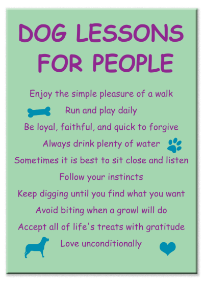 Dog Lessons for People - Magnet