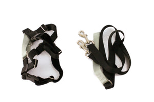 "Freedom Harness, No Pull Dog Harness & Leash Combo 1"" Wide - Large - Black - Only One Treats"