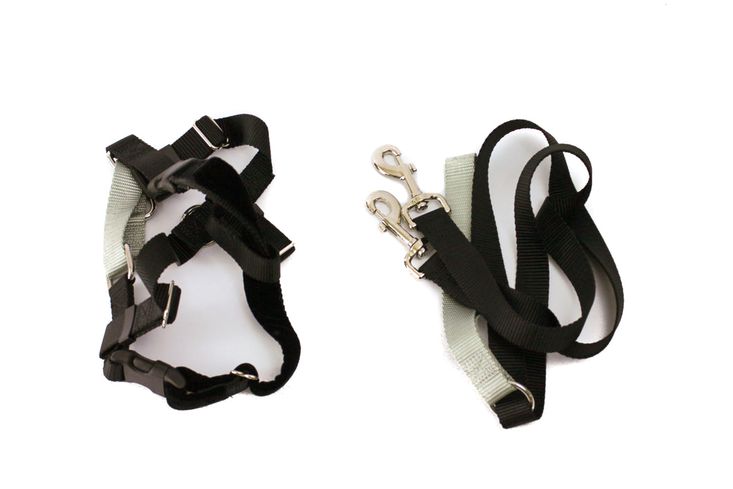 Freedom Harness, No Pull Dog Harness & Leash Combo 1