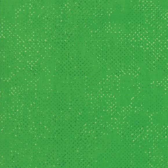 Spotted Kelly Yardage by Zen Chic for Moda 1660-50 - PRICE PER 1/2 YARD