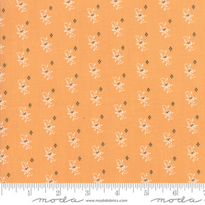 All Hallow's Eve Pumpkin Yardage by Fig Tree & Co. for Moda - 20352 11 - PRICE PER 1/2 YARD