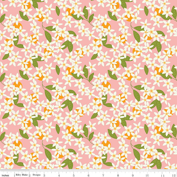 Grove Blossoms Grapefruit Yardage for Riley Blake Designs C10142 GRAPEFRUIT PRICE PER 1/2 YARD