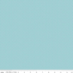 Kisses Tone On Tone Aqua Yardage by Doodlebug Designs for Riley Blake Designs-C210 AQUA- PRICE PER 1/2 YARD