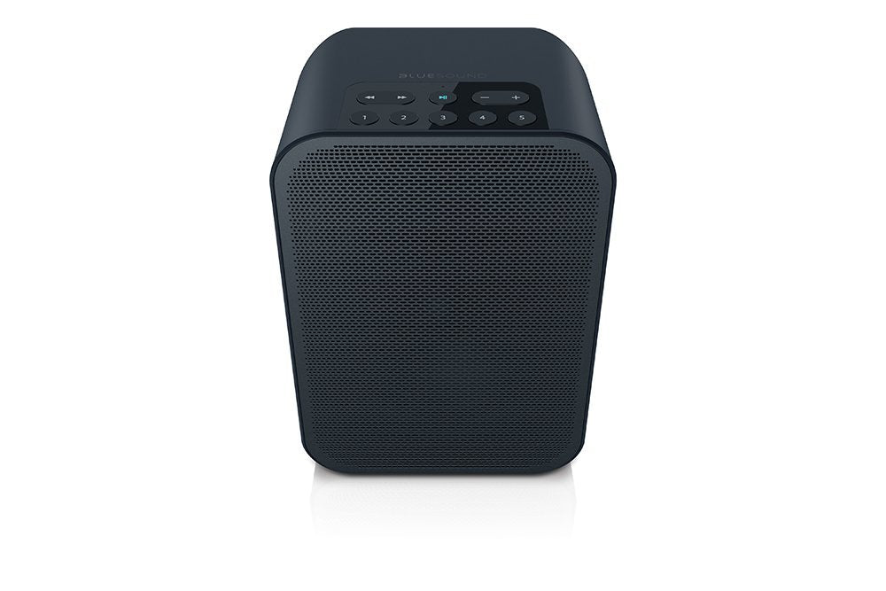 Bluesound PULSE FLEX Portable Wireless Multi-Room Smart Speaker with Bluetooth - Speakers - Bluesound - Topchoice Electronics