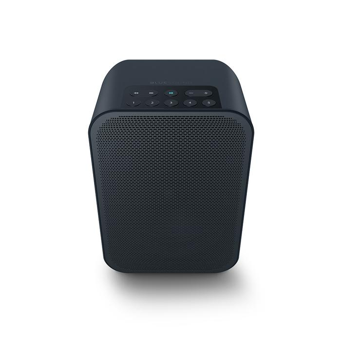 Bluesound PULSE FLEX 2i Portable Wireless Multi-Room Music Streaming Speaker In Black