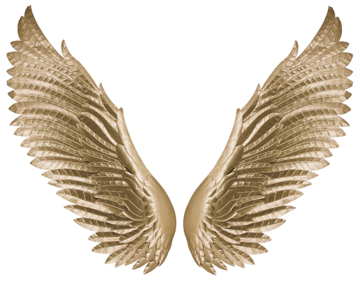 Golden Wings - Metal Wall Decor  54×26   SH1398