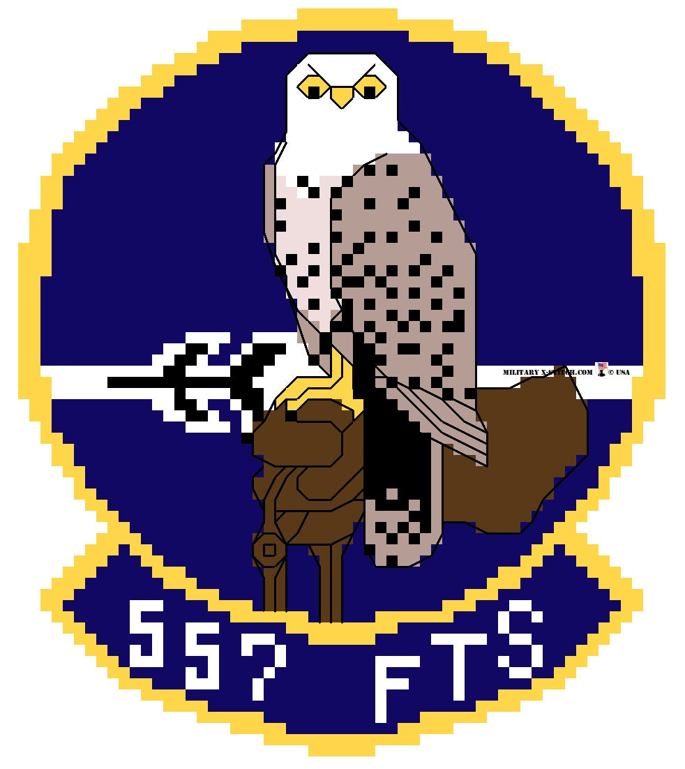 Flying Training Squadron, 557th Wing Patch PDF