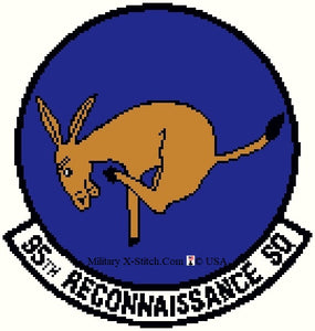 Reconnaissance, 95th Squadron Insignia