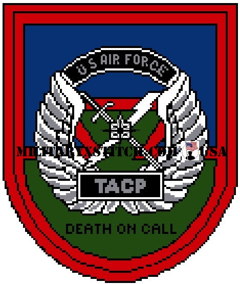 Tactical Air Control Party Insignia PDF