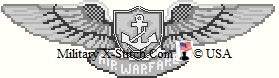 Naval Aviation Warfare Specialist Wings Insignia