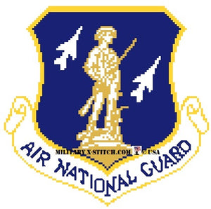 Air National Guard Insignia