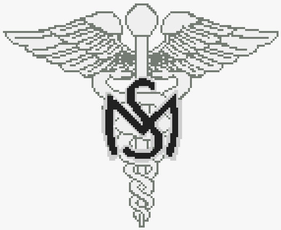 US Army Medical Services Badge (Collar Insignia) Kit