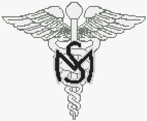 Medical Services Badge (Army) (Collar Insignia)